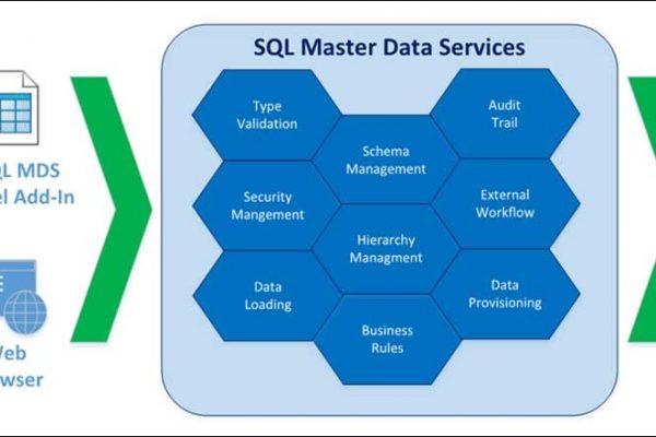 SQL Master Data Services